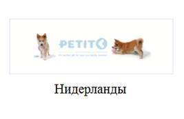 Логотип Petit (Петит), Нидерланды. Продажа серебряных украшений Petit (Петит), Нидерланды оптом и в розницу