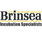 Логотип Brinsea (Бринси), Великобритания. Продажа серебряных украшений Brinsea (Бринси), Великобритания оптом и в розницу