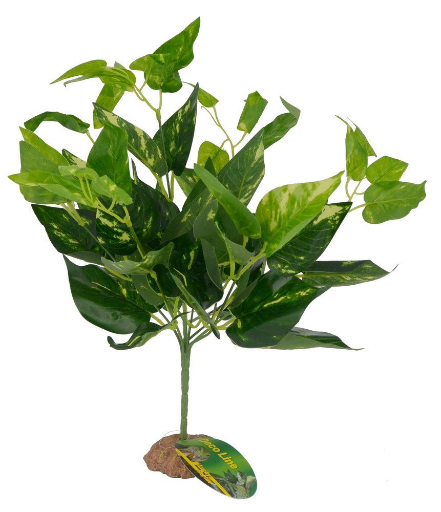 Лаки Рептайл Декоративное растение Scindapsus green для террариумов, 40 см, Lucky Reptile