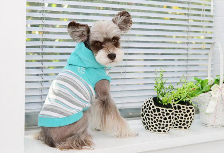 Паппи Футболка-толстовка с капюшоном для собак Oceane голубая, в ассортименте, Puppia