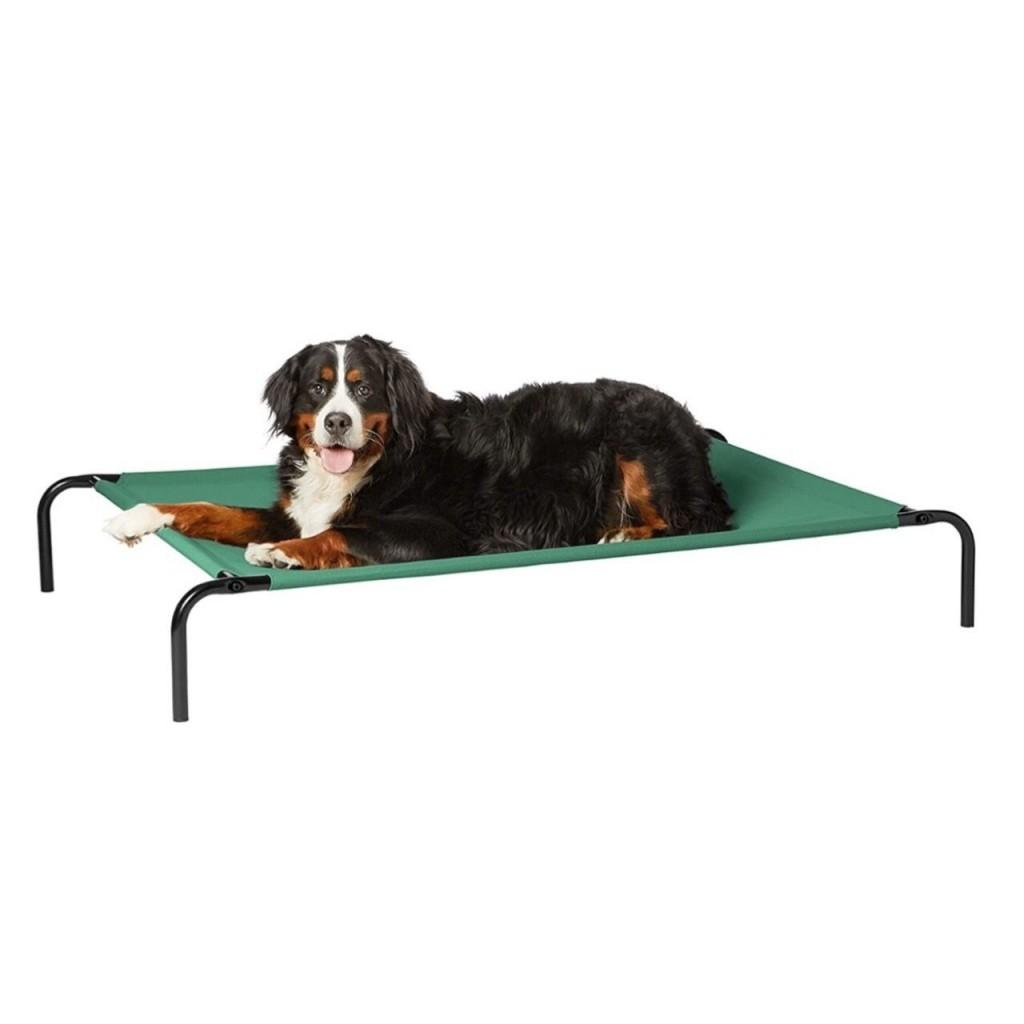 ДогЛэнд Раскладушка (топчан) для собак, цвет полотна зеленый, в ассортименте, Dog Land
