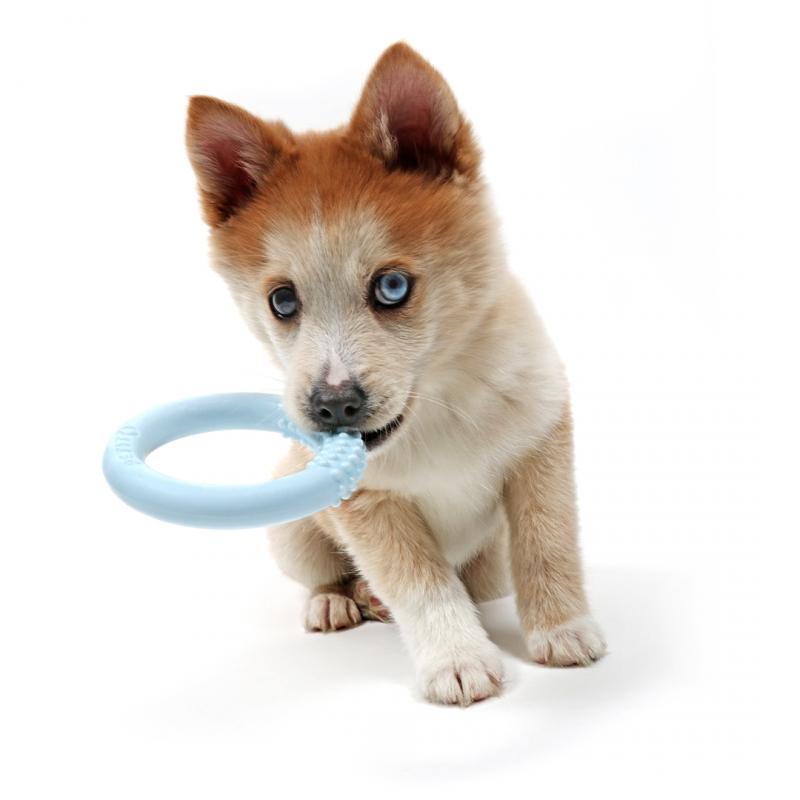 Петит Игрушка для щенков Lola, 10*2 см, в ассортименте, TRE-резина, Petit