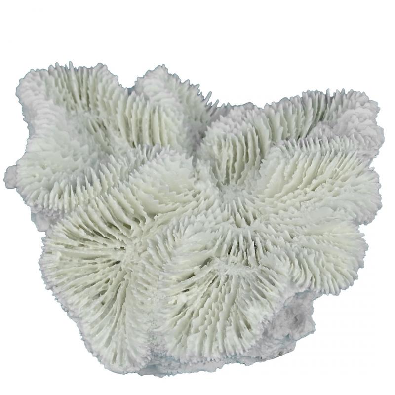 АкваДелла Декорация для аквариума Коралл Фунгия белый 12*12*5 см, AquaDella