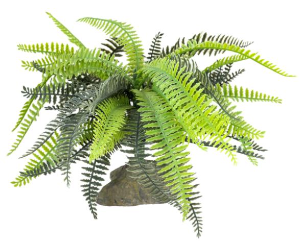 Лаки Рептайл Декоративное растение Fern для террариумов, 25 см, Lucky Reptile