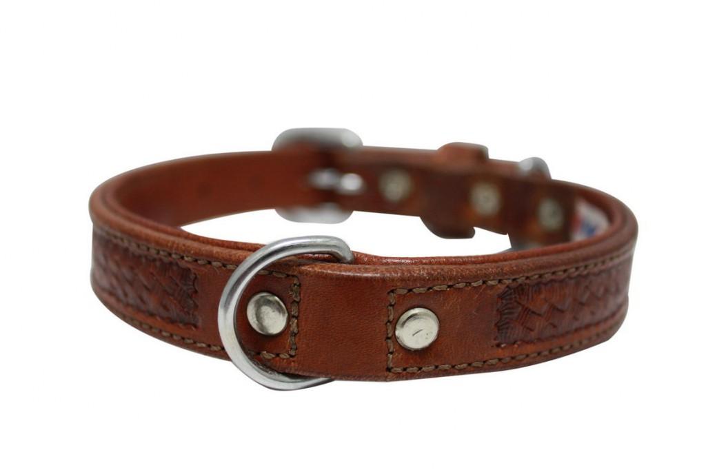 Энджел Ошейник для собак Santa Fe, коричневый, натуральная кожа, в ассортименте, Angel