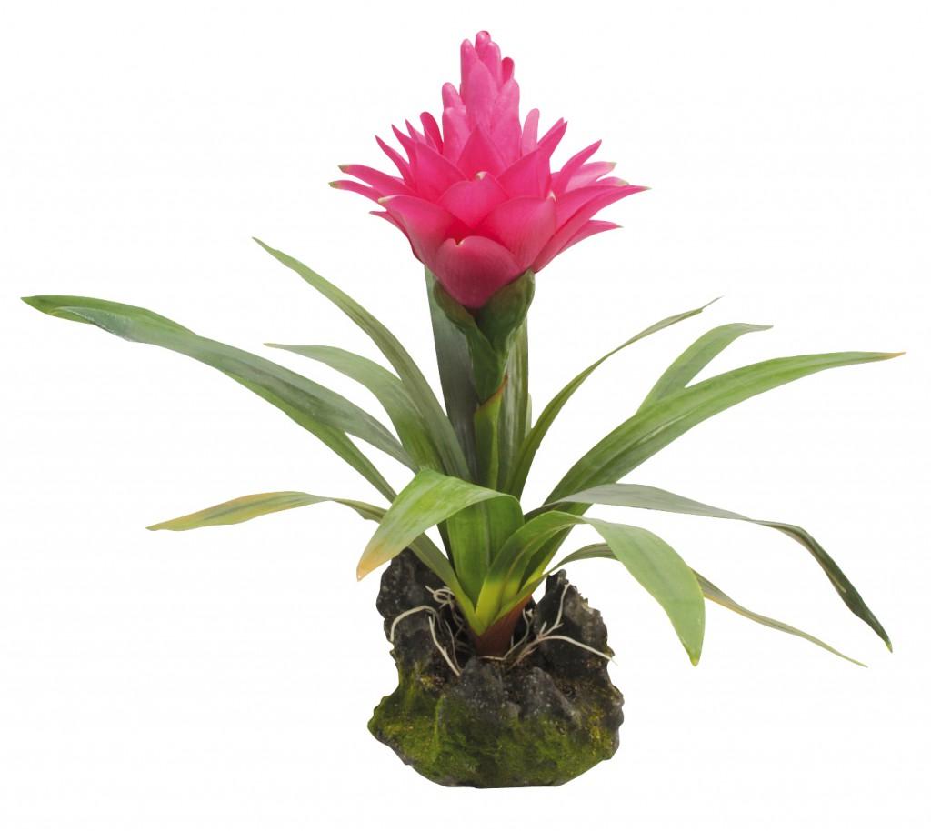 Лаки Рептайл Декоративное растение Bromelia 35 см, Lucky Reptile