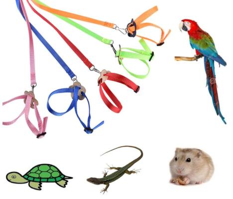 Шлейка Цветочек для птиц, грызунов, рептилий, общая длина 1,2 м, в ассортименте