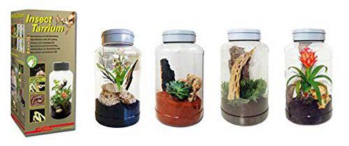 Лаки Рептайл Инсектарий-флорариум Insect Tarrium 5 л, 15*25 см, Lucky Reptile