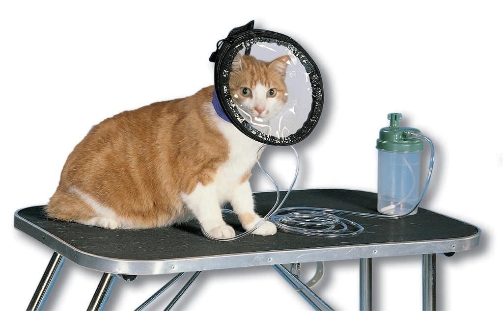 Круз Маска кислородная для собак и кошек, в ассортименте, Kruuse