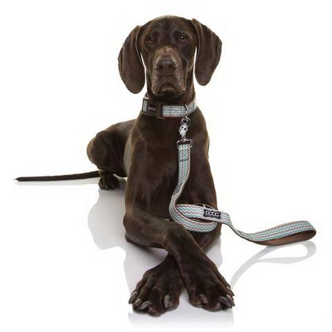 Дуг Ошейник Benji для собак, нейлон/неопрен, в ассортименте, коричнево-голубой зигзаг, Doog