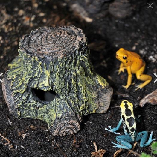 Лаки Рептайл Укрытие-пещера для древесных лягушек Frog Cave, 15*8*5,5 см, имитация дерева, Lucky Reptile