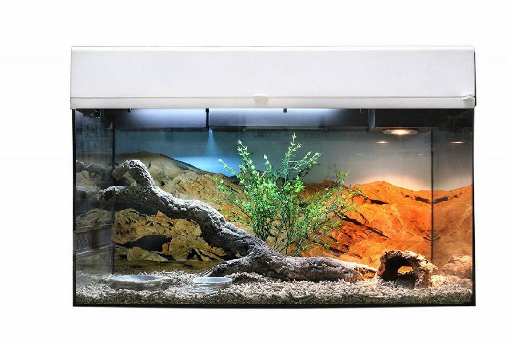 Лаки Рептайл Террариум Стартовый комплект для Бородатых Агам, в ассортименте, 80*40*52 см, Lucky Reptile
