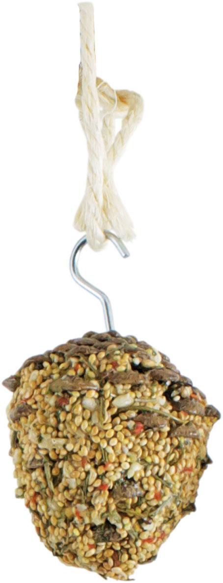 JR Farm Шишки с лакомством (фуражная игрушка) для птиц, 2*60 г