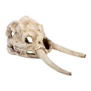Пенн Плекс Декорация для аквариума Череп мамонта, 11,4*23,5*12,7 см, Penn-Plax