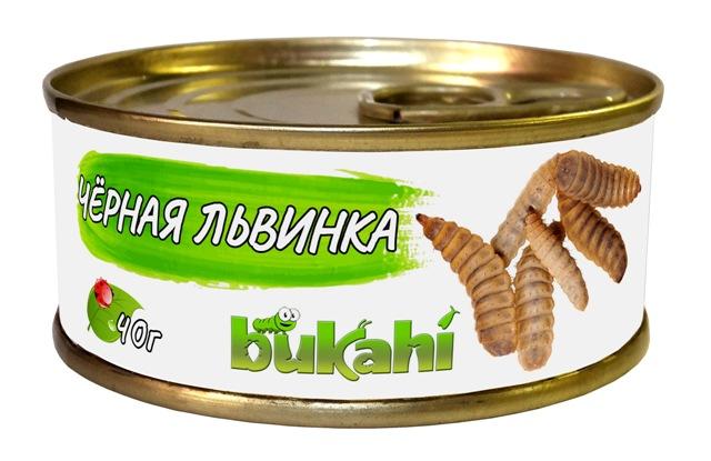 Букахи Консервы Личинки мухи черной львинки для насекомоядных, 40 г, Bukahi
