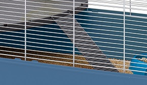Ферпласт Пластиковая лестница L356 для клетки Criceti 15, Hamster Duo, Hamster Tris, 27*7 см, Ferplast