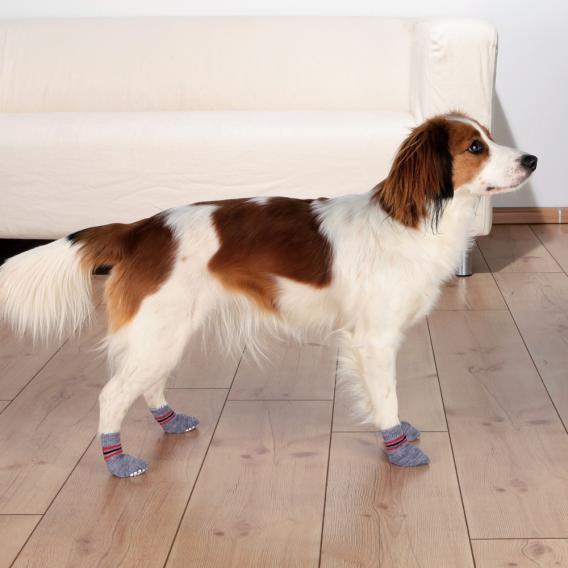 Трикси Носки для собак Dog Socks нескользящие серые, в ассортименте, 2 шт/уп., хлопок/лайкра, Trixie