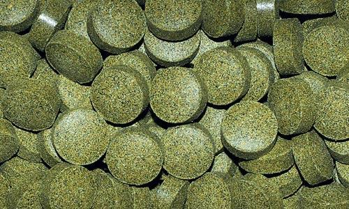 Даяна Корм Tablets Bottom для рыб, таблетки, в ассортименте, Dajana