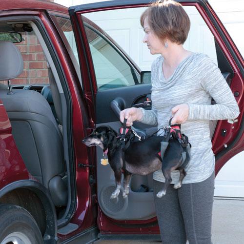 Солвит Шлейка для пожилых, травмированных собак, в ассортименте, нейлон, Solvit Products