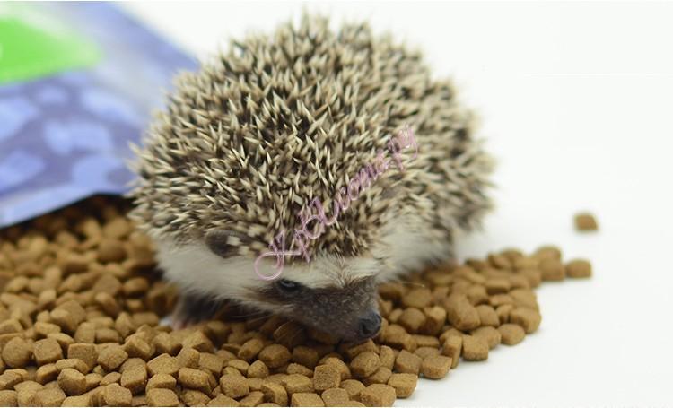 Мелкий гранулированный сухой корм Premium Hedgehog Food для африканских ежей, 450 г, Dr. Thorn