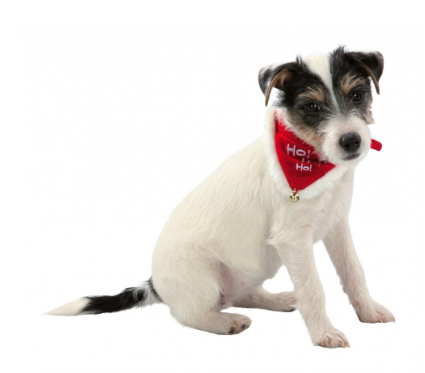 Трикси Рождественский ошейник с галстучком и бубенчиком Necki для кошек и собак, в ассортименте, Trixie