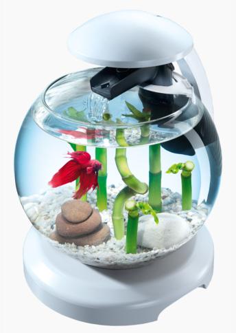 Тетра Аквариум-шар 6,8 л с LED-освещением, фильтром и водопадом Cascade Globe (Каскейд Глоуб), в ассортименте, Tetra