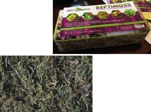 Репти Зоо Натуральный мох сфагнум сушеный в брикете, 100 г, Repti Zoo