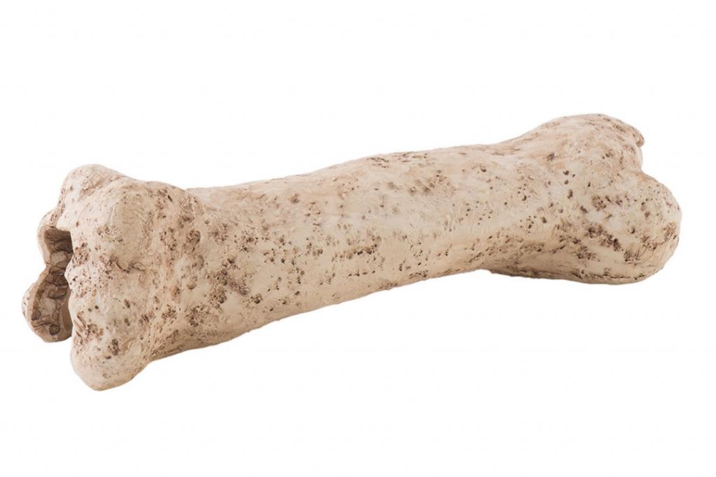 """Хаген Убежище-декор для террариума """"Кость динозавра"""" Exo Terra Dinosaur Bone, Hagen"""