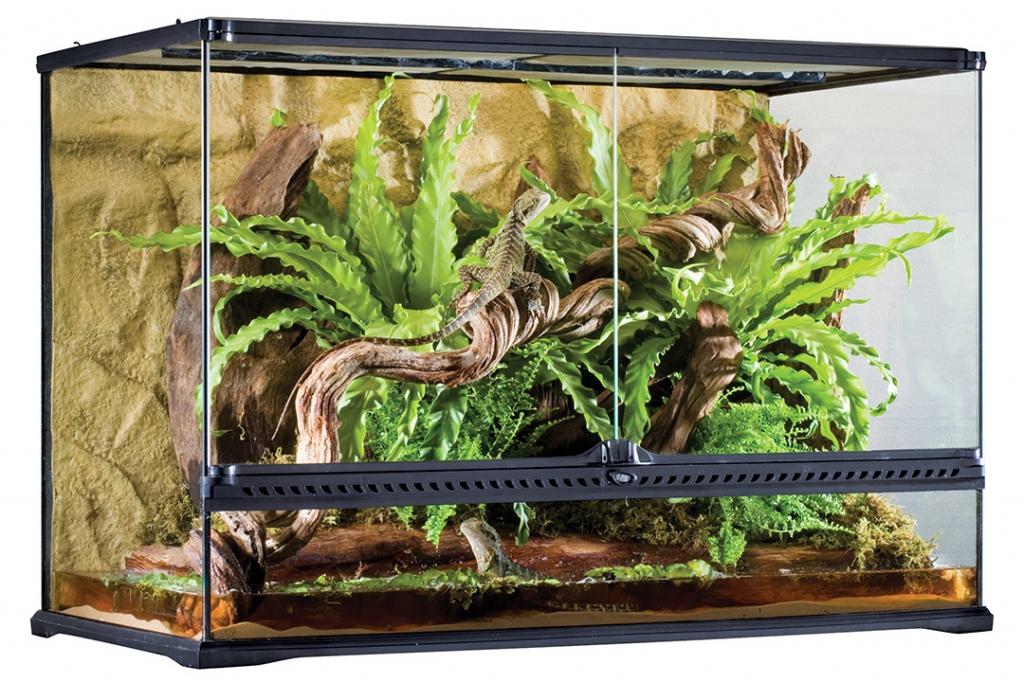 Экзо Терра Террариум стеклянный Natural Terrarium серия Large, в ассортименте, Exo Terra