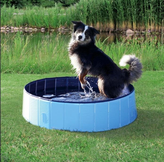 Трикси Бассейн уличный для собак, в ассортименте, голубой/синий, Trixie