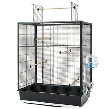 Савик Клетка PRIMO 60 OPEN EMPIRE черная для птиц, 80*50*95 см, открывающийся верх, Savic