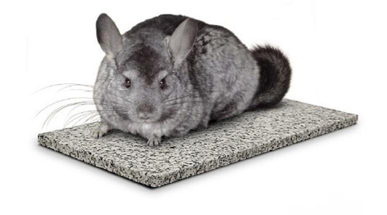 Камень для охлаждения шиншилл Chin Chiller, гранит, 15*30*0,6 см, Италия