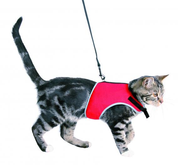 Трикси Шлейка-жилетка мягкая с поводком для кошек, 24-42 см, нейлон, цвета в ассортименте, Trixie