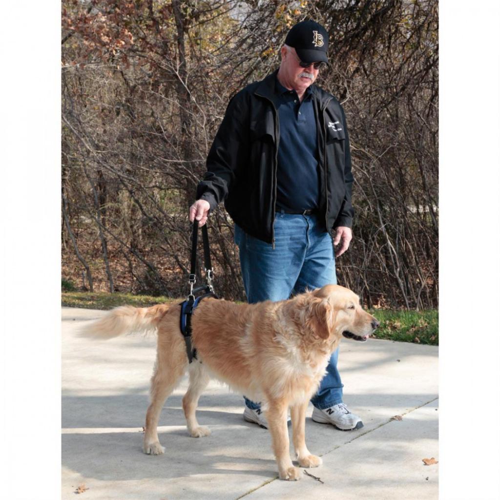 Солвит Поддерживающий пояс для задних ног для пожилых, травмированных собак, в ассортименте, нейлон, Solvit Products