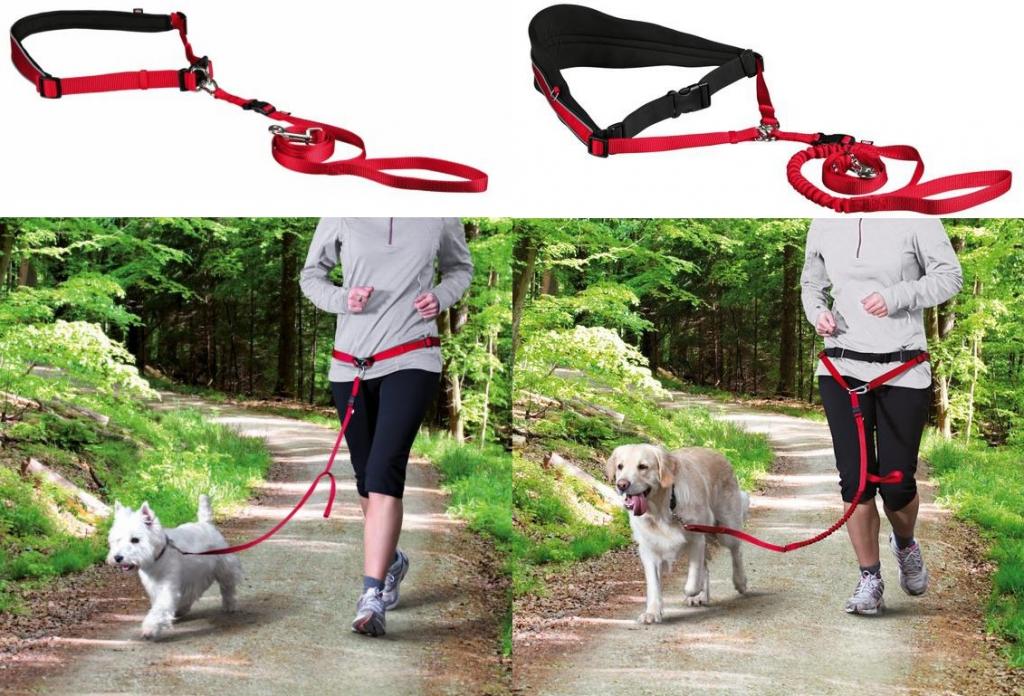 Трикси Поводок с поясным ремнем со светоотражающими элементами для собак, в ассортименте, красный, Trixie