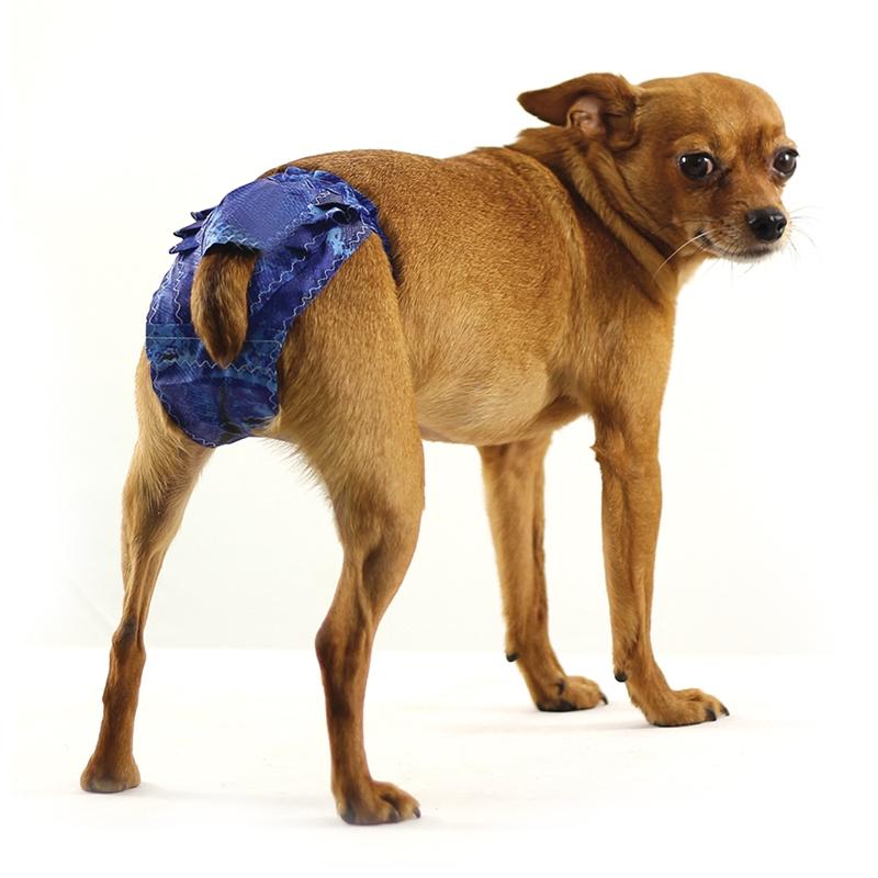 Гамма Защитные штанишки (трусы гигиенические) для собак, в ассортименте, болонь, Gamma