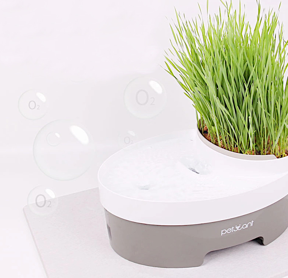 Петвант Питьевой фонтан PW-101 с емкостью для корма/выращивания травы и с индикатором уровня воды, 32*22*15,3 см, объем 3 л, Petwant