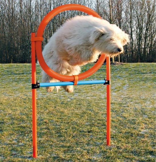 """Трикси Набор для аджилити """"Tire Jump"""", 115 × ø 3 cm, ø 65 см, Trixie"""