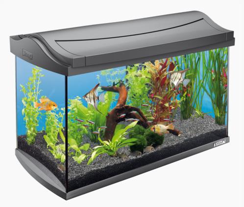 Тетра Аквариум AquaArt LED Tropical со светодиодным LED освещением, функция ДЕНЬ/НОЧЬ, 61*33,5*42,7 см, антрацит, Tetra