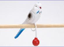 """Игрушка для птиц """"Попугай пластиковый на кольце"""", 15 см, пластик, I .P.T.S."""