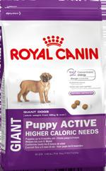 Корм Роял Канин GIANT Puppy Active для щенков собак гигантских пород (вес взрослой собаки более 45 кг) с высокими энергетическими потребностями, в возрасте до 8 месяцев, Джайнт Паппи Актив, 15 кг, Royal Canin