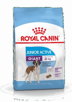 Корм Роял Канин GIANT Junior Active для щенков собак гигантских пород (вес взрослой собаки более 45 кг) с высокими энергетическими потребностями, в возрасте от 8 до 18/24 месяцев, 15 кг, Royal Canin