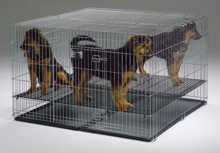 ПетЛайн Металлическая клетка с грилем (решеткой) для щенков, PetLine