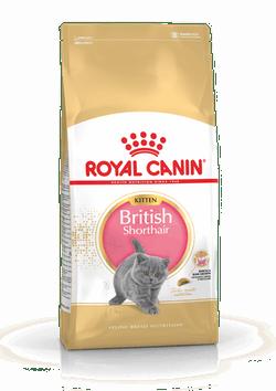 Корм Роял Канин для котят породы британской короткошерстной в возрасте от 4 до 12 месяцев British Shorthair Kitten, в ассортименте, Royal Canin