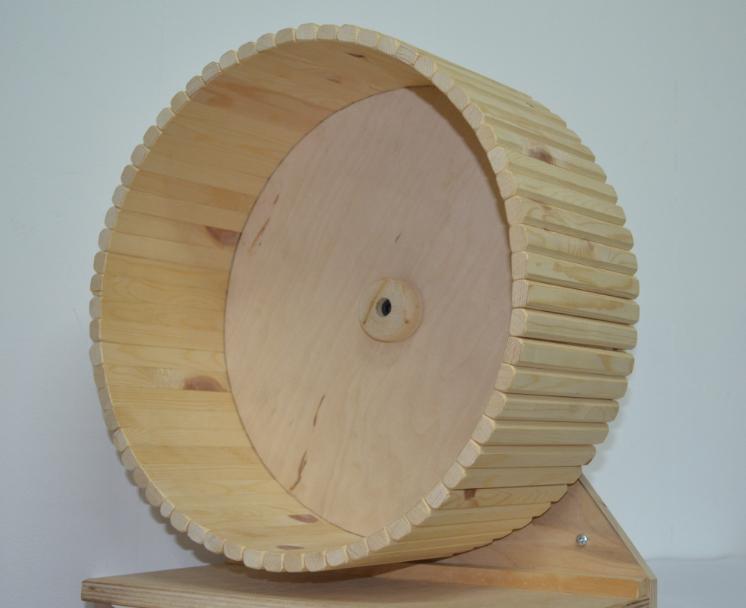 Деревянное колесо для бега, можно вешать на прутья или поставить на пол, в ассортименте, сосна, Россия