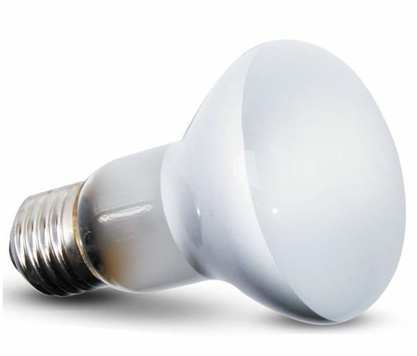 РептиЗоо Лампа точечного нагрева BeamSpot стандарт R63, в ассортименте, ReptiZoo