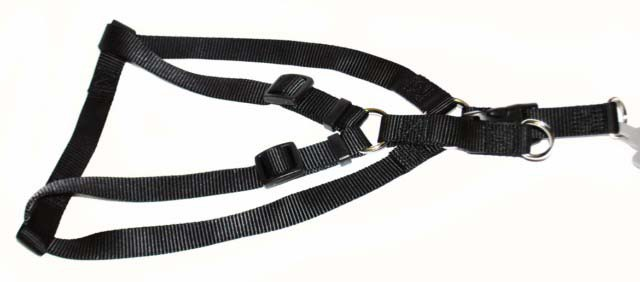 Хантер Шлейка для собак Ecco Quick (Эко Квик) черная, нейлон, 2 размера, Hunter
