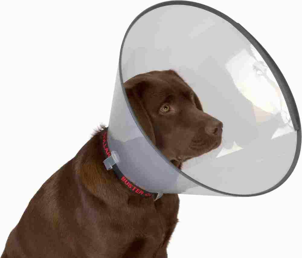 Круз Воротник защитный ветеринарный Buster (Бустер) Комфорт для кошек собак, в ассортименте, Kruuse