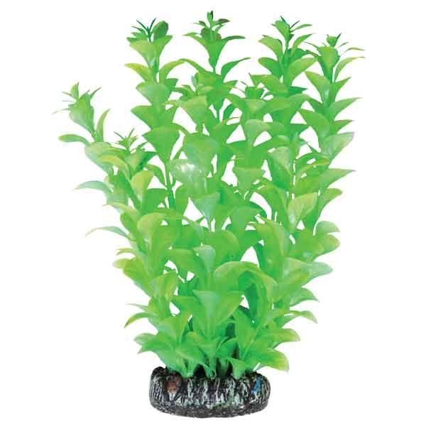 Лагуна Растение Людвигия светящееся для аквариума, 20 см, Laguna