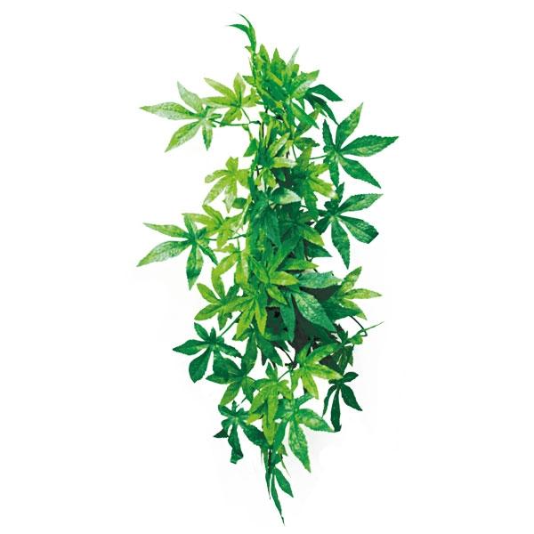 "РептиЗоо Растение подвесное ""Абутилон"" для террариума, 3 размера, ReptiZoo"